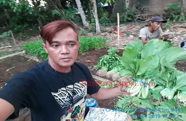 Kelompok Tani Wakatitir Berani Bersaing Kembangkan Hortikultura