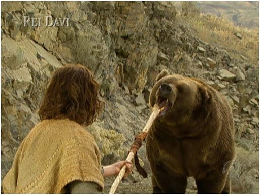 davi-mata-o-urso