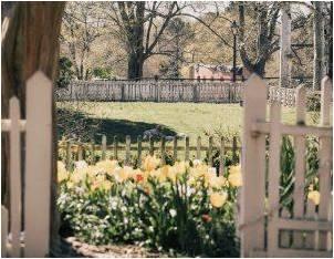 A fenced yard.