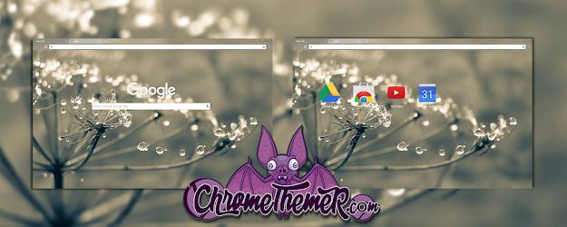 Cobweb Google Theme  | Chrome Web Store