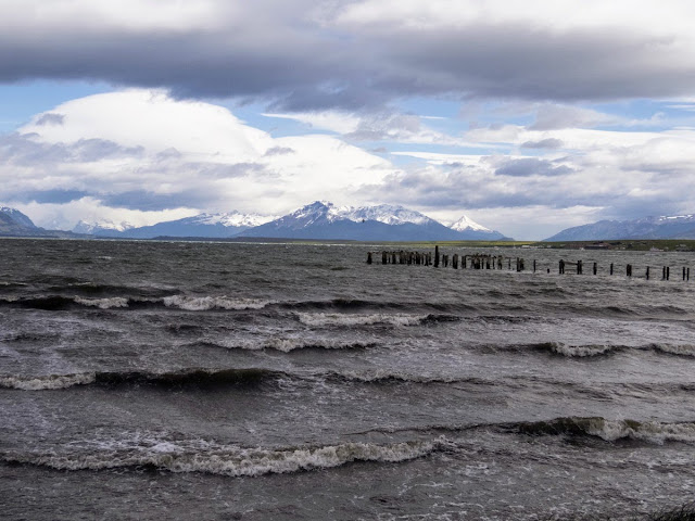 Birdwatching Patagonia: Waves on the shore in Puerto Natales Chile.