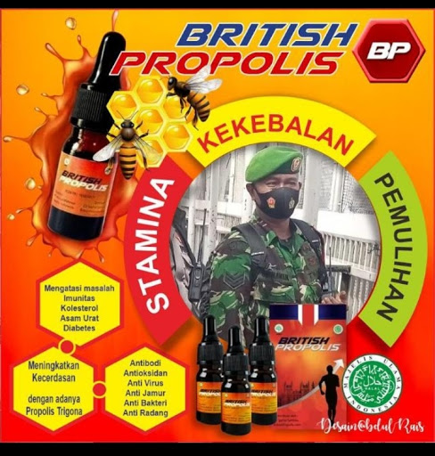 Sehat & Kuat dengan BRITISH PROPOLIS