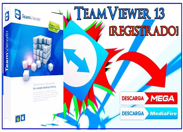 teamviewer premium -