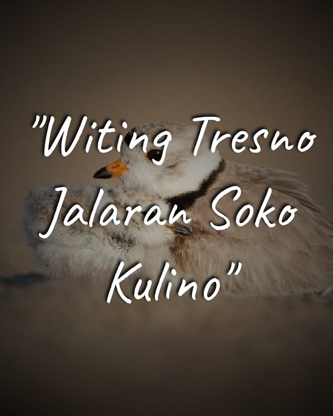 """""""Witing Tresno Jalaran Soko Kulino"""", Ungkapan Jawa yang Sangat tak Jawa"""