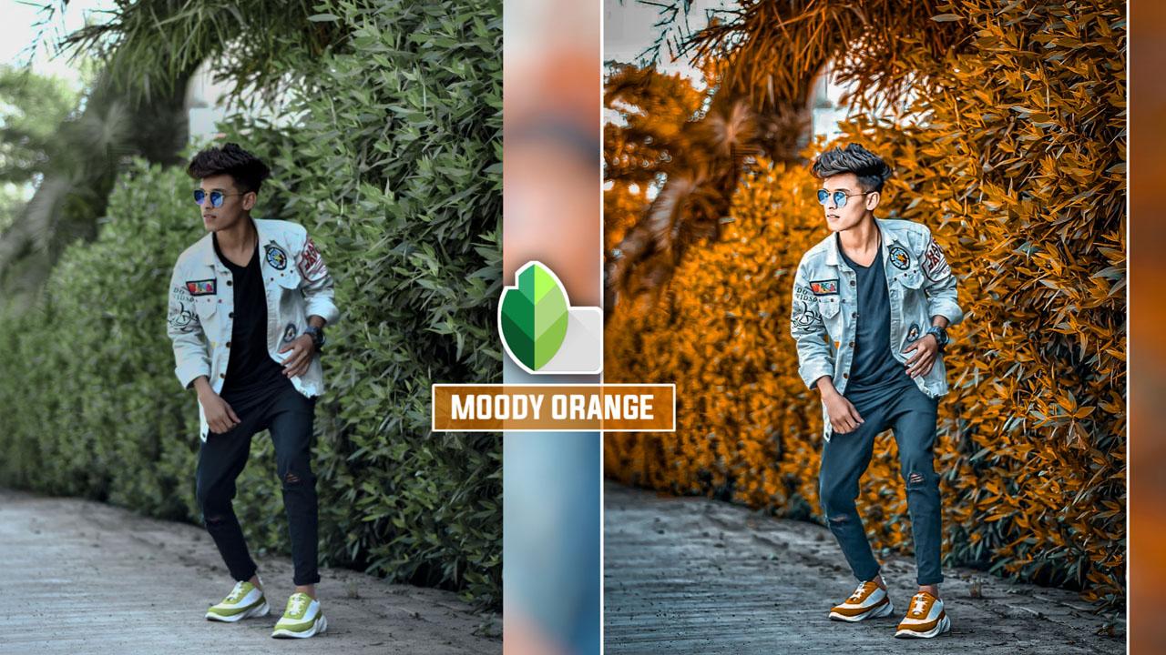 Snapseed Moody Orange