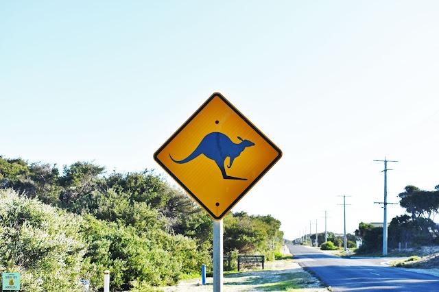 Señales de tráfico típicas de Australia