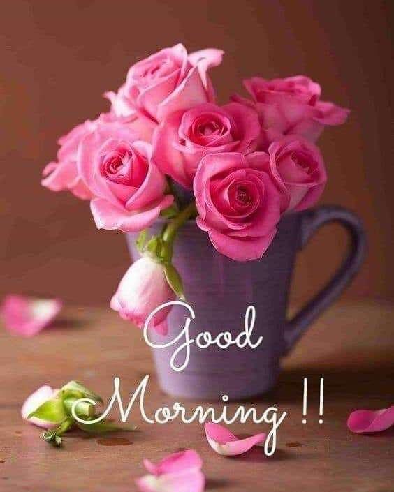 Good Morning Brazil Wishes Beautiful Image