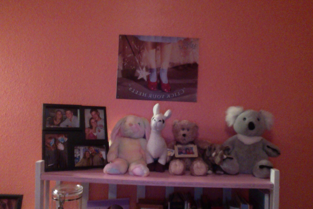 coral colored teen girl bedroom