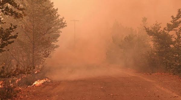 Φωτιά στην Εύβοια: Ασυγκράτητη η φωτιά – Καίει σπίτια στο Πευκί (VIDEO)