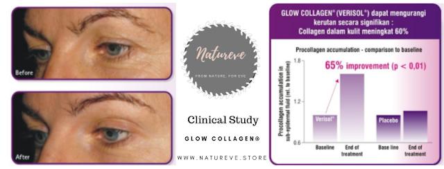 Uji Klinis Glow Collagen Volume kerutan berkurang dan procollagen meningkat