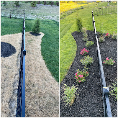 before and after new mulch bed