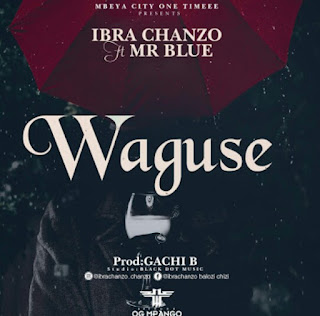 DOWNLOAD AUDIO | Ibra Chanzo Ft  Mr Blue - Waguse  MP3