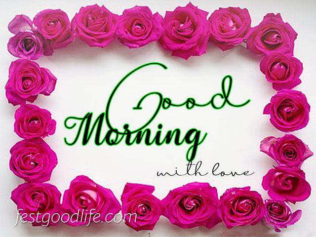red rose good morning images hd flower morning wish