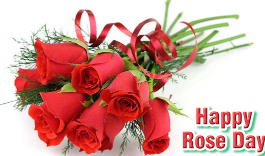 Happy Rose Day 2017 Images, Quotes, Wishes & Shayari