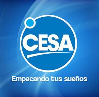 Catalogo de Servicios - CESA