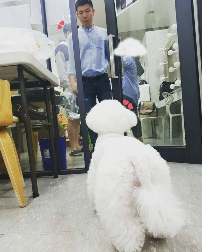 170525 suertesh0531 Instagram update with Sehun's Dog