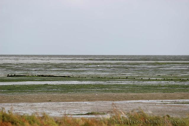 Wadden Sea UNESCO Site