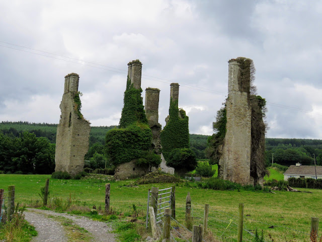 Things to do near Athlone: Castlecuffe Ruins