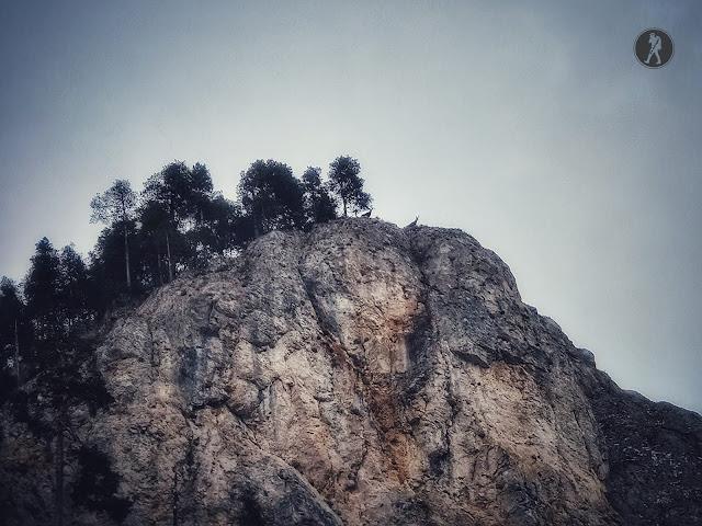 Vârful Suhardul Mic (1345m) - Traseu ușor în Cheile Bicazului, Munții Hășmaș