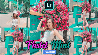 Preset Lightroom Pastel Mint New Update DNG & XMP
