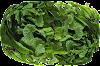 पुदीने की पत्तियों के स्वास्थ्य लाभ जो आपको अवश्य जानना चाहिए!