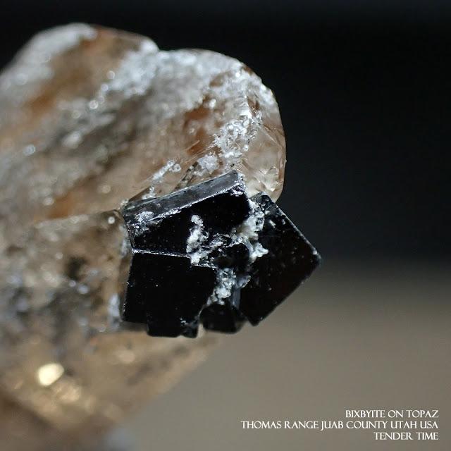 ビクスビアイト ビクスビ鉱 ビクスビ石 Bixbyite on Topaz Thomas Range Juab County Utah USA