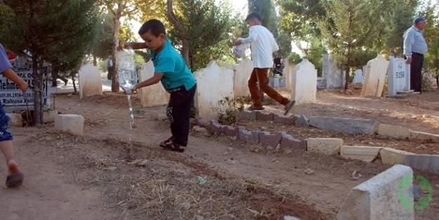 Mezarlıkta Neden Toprağa Su Dökeriz? Ölüye Bir Faydası Var Mıdır?