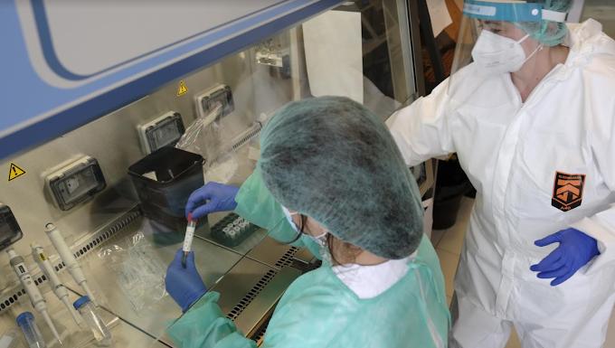 Coronavirus: 19.143 nuovi casi e 91 morti con più di 180 mila tamponi