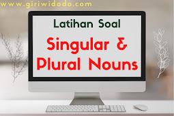 Latihan Soal Singular and Plural Nouns