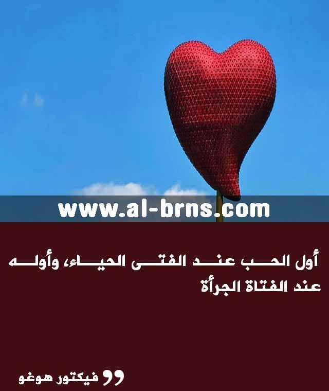 عبارات عن الحب قصيرة مكتوبه (3)