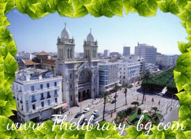 Город Тунис: единство Востока и Запада