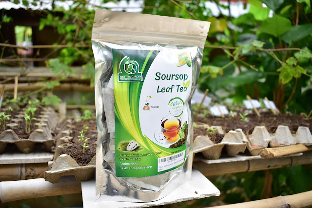 Organic Soursop Leaf Tea