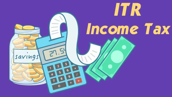 Do it yourself (DIY) file your income tax e-filling online form, checkout below Page contents for all the snippets on instructions for Income Tax Returns (ITR) efilling and also works for ITR filing through XML upload.  Step by step guide for all sections, schedule and procedure of Indian Income Tax Returns efilling.