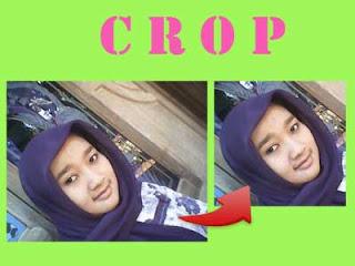 Cara Memotong (Crop) Gambar di Word