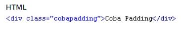 Pengertian dari CSS, Fungsi CSS Beserta Contoh nya 13_