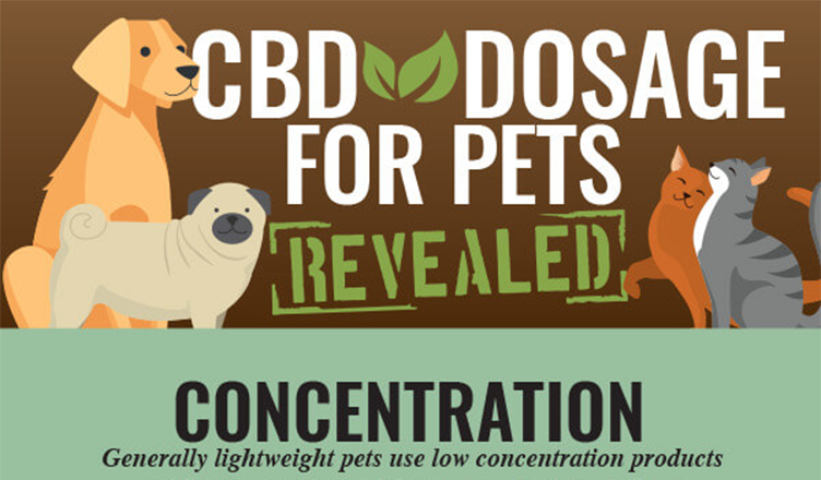 CBD Oil Dosage Chart For Dogs & Cats #infographic