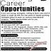 Sagacious System Pvt. Lahore Jobs - Latest Career-Pk