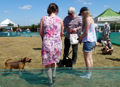 Picture: Former Brigg & Goole MP, Ian Cawsey, judging the dog show at Jerry Green's sanctuary on a very hot Sunday in July 2018 - see Nigel Fisher's Brigg Blog
