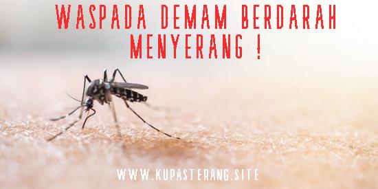 www.kupasterang.site