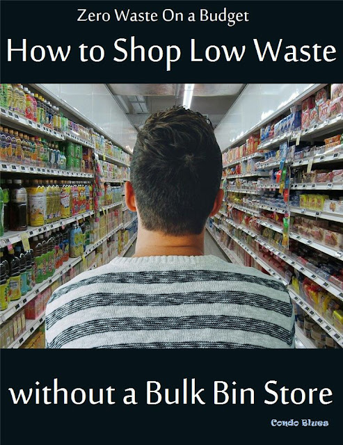 zero waste living on a budget at a conventional grocery store