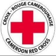 Recherche d'un(e) ICT Spécialiste 2 à la Croix-Rouge