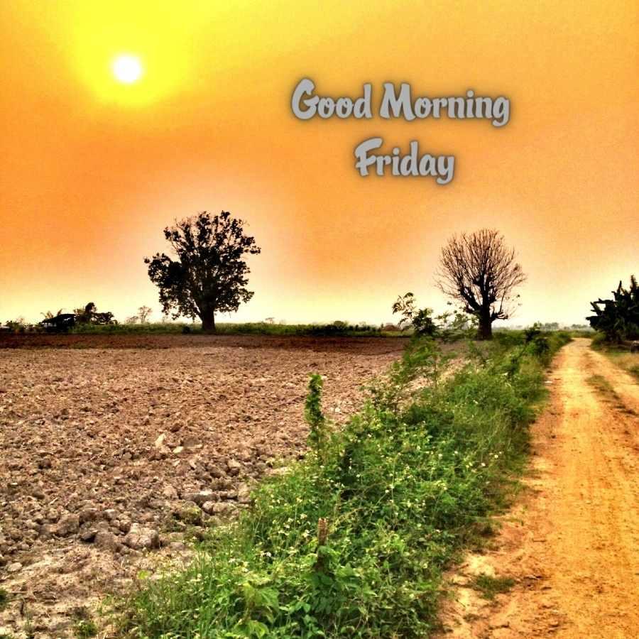 good morning friday pics