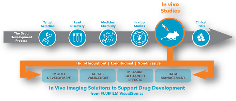STEPS INVOLVE IN DRUG DICOVERY AND DEVELOPMENT PROCESS INCLUDES