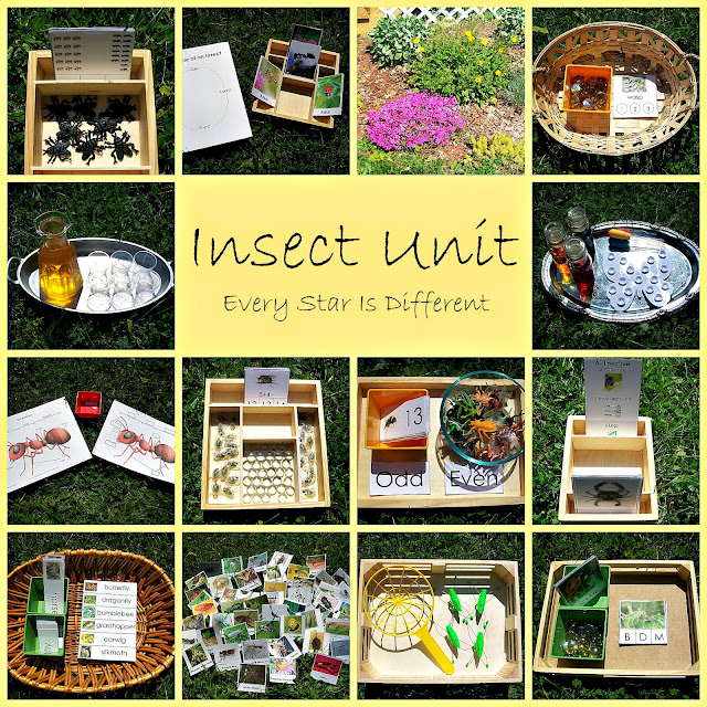 Montessori-inspired Insect Activities for kids with free printables.