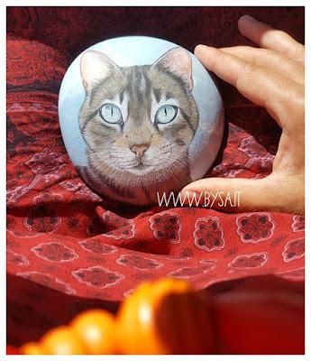 animali e coronavirus gatti