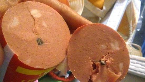 consumidora encontrou mosca mortadela sera indenizada