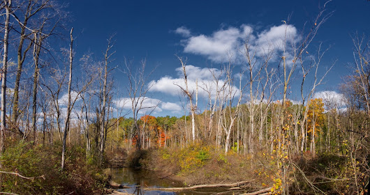 Vermillion Creek & Burke Lake Panoramas