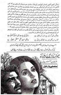 Mera Sara Zang Utar Do Episode 13 By Afshan Afridi