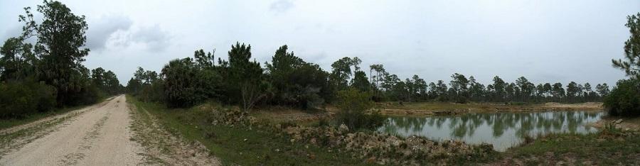 La carretera de tierra dentro del Babcock Ranch y el paisaje