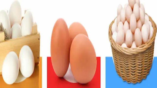 الفرق بين البيض البلدي والبيض العادي